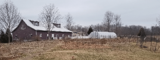 barn and flower beds in winter